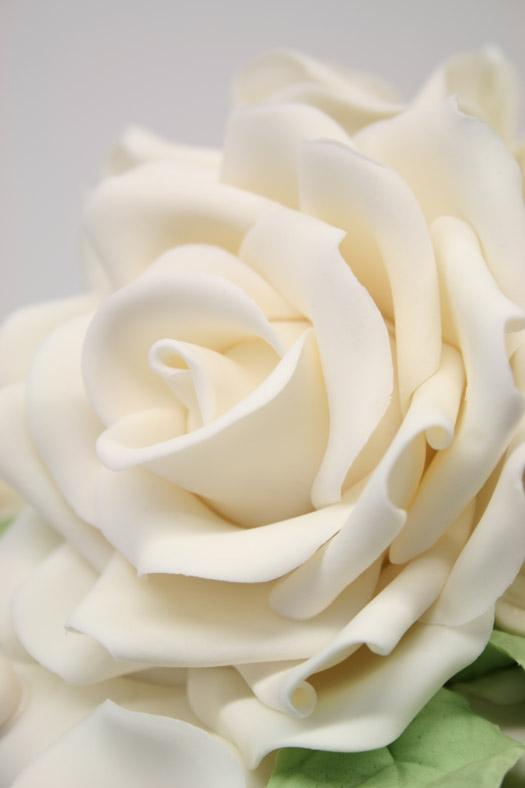 IMG_white RK rose