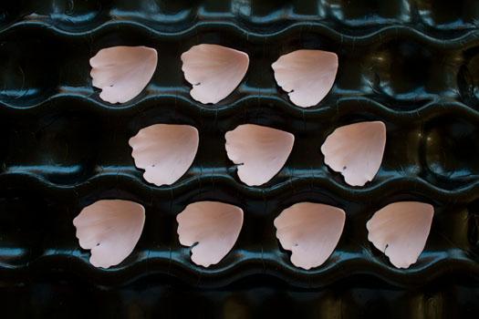 Petals for a gum paste peony