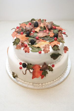 2 tier Fall cake