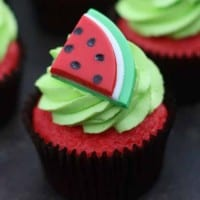 Watermelon Cupcake for CJ