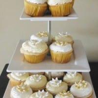 vegan frosting cupcakes (315x525)