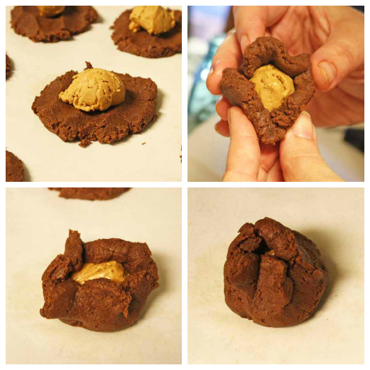 Chocolate Cookie Collage
