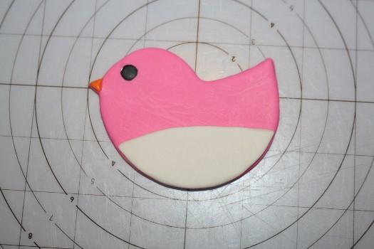 birds 9 (525x350)