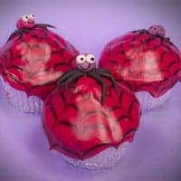 Spider cupcakes featured