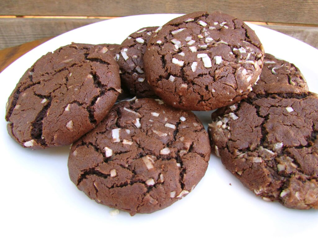 dark chocolate coconut cookies