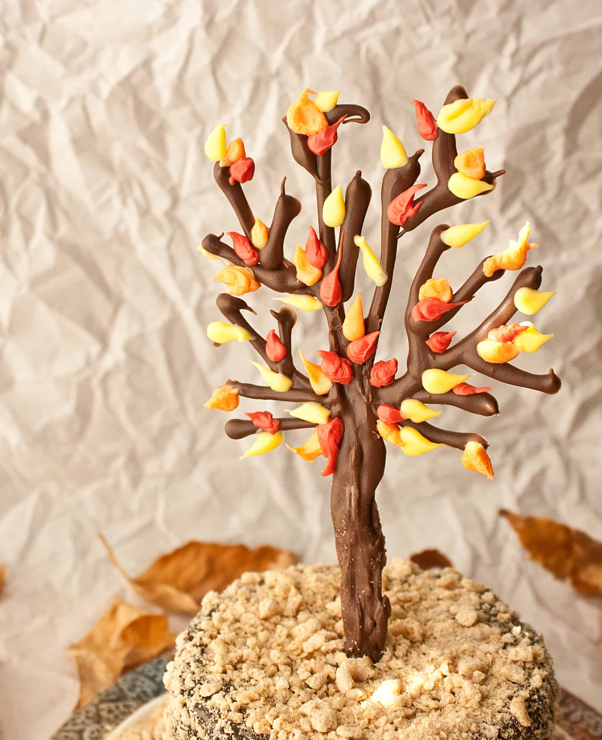 How To Make A Chocolate Tree Cake Topper Cakejournal Com