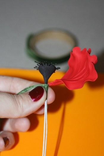 poppy (23) (350x525)