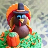 turkey cake topper