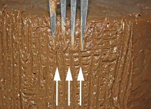how to decorate a cake with just a fork 3