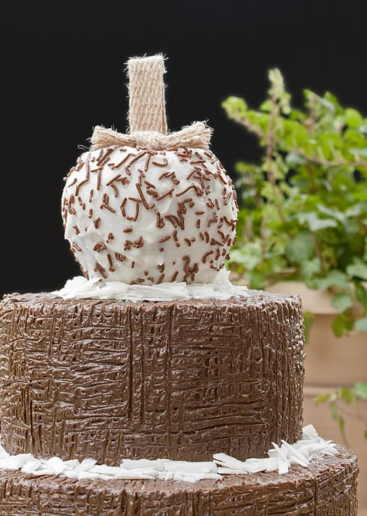 how to decorate a cake with just a fork 6