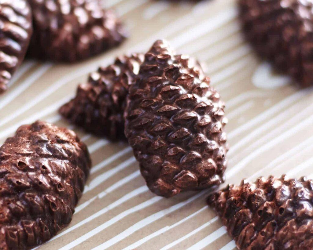 Pinecones10878