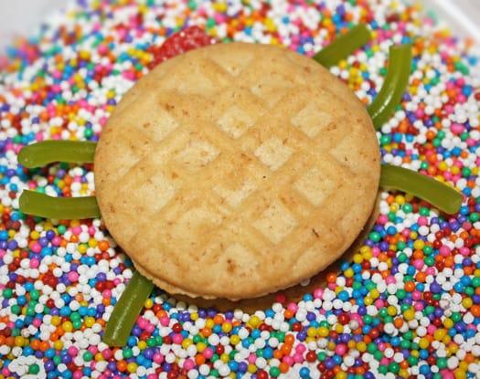sassy spider cookies 5