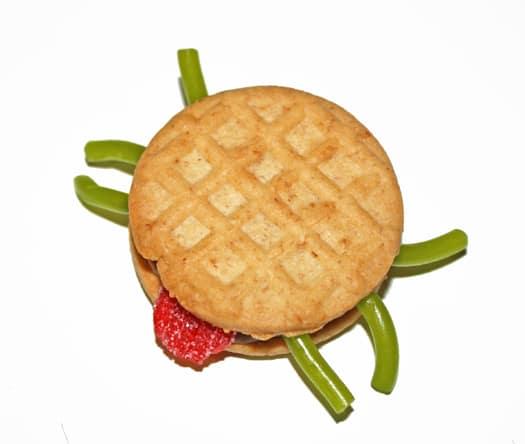 sassy spider cookies 7