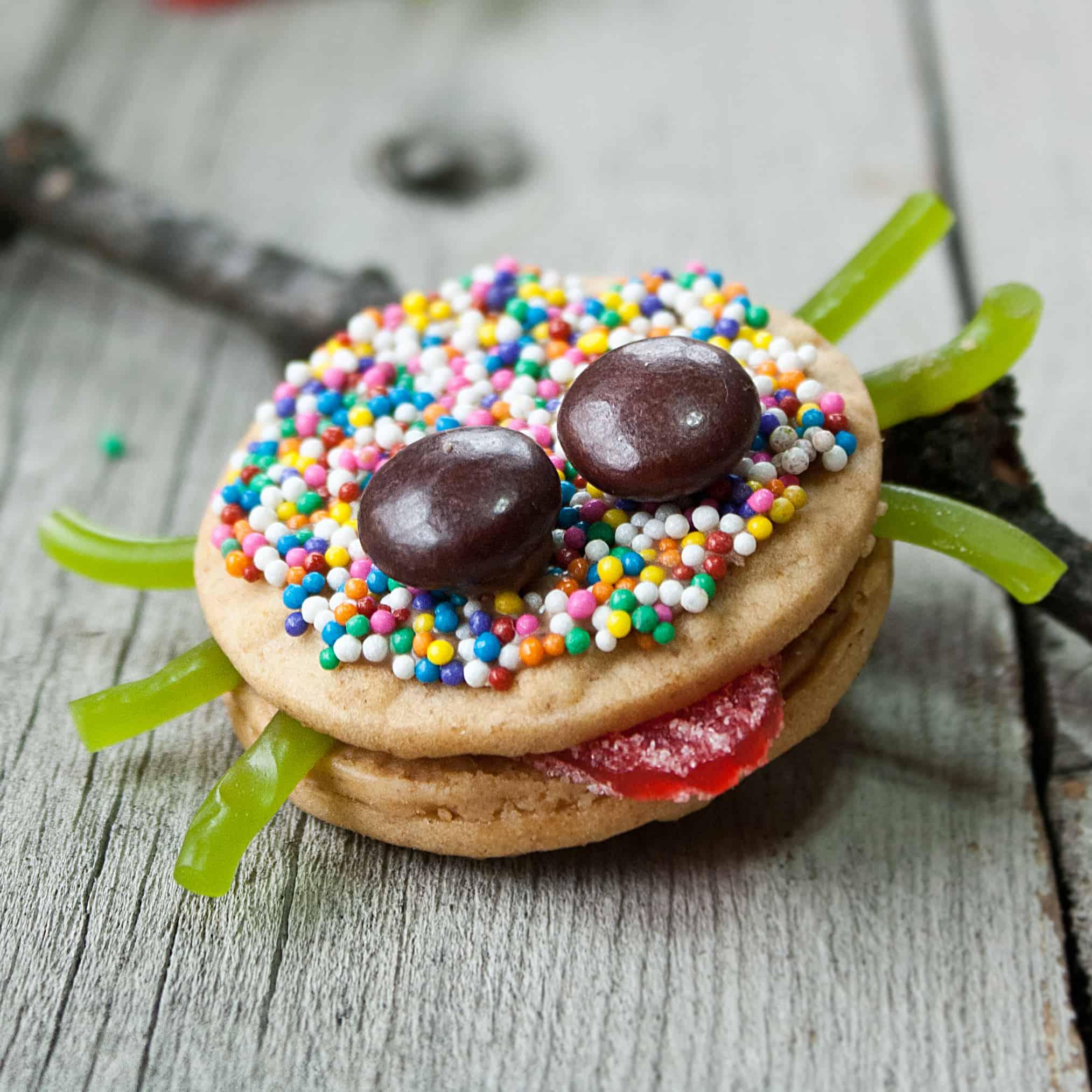 Sassy Spider Cookies